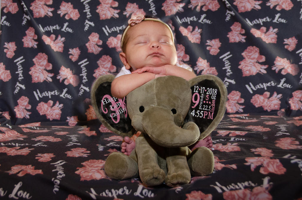Infant Photo Examples Youngstown Ohio